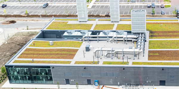 Green roof of the central utility plant